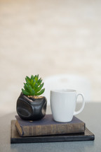 coffee cup, house plant, and a stack of books