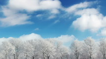 clouds over icy trees