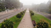 Aerial perspective of walking on a path in the park with fog