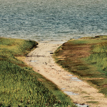 dirt path leading to a shore