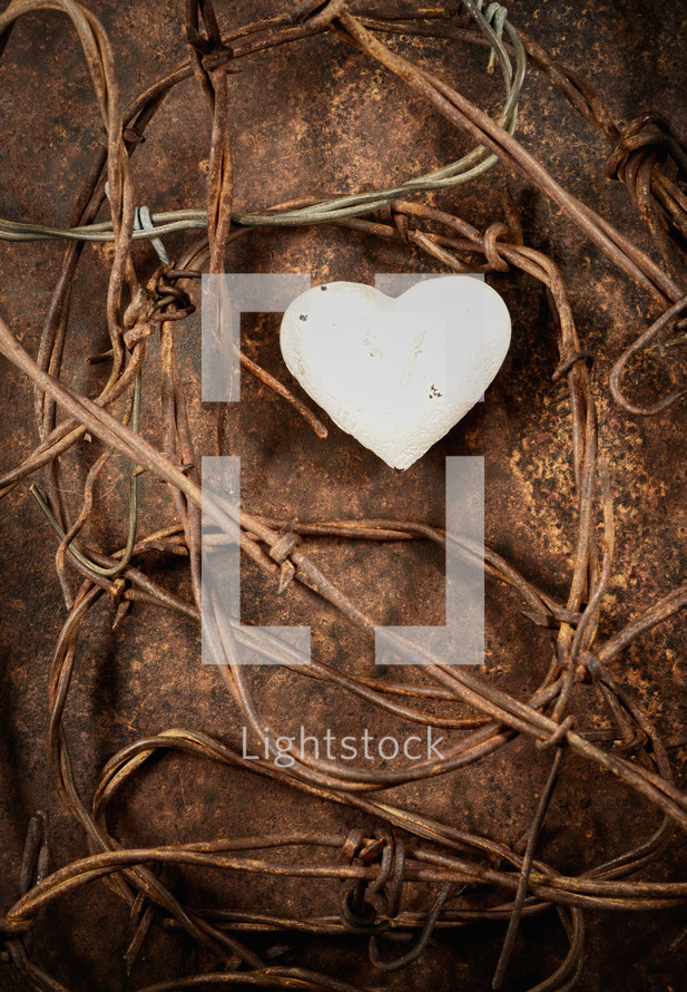 Heart surrounded by barbed wire.