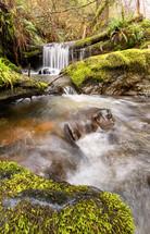 Trinidad falls