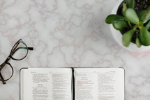 reading glasses, potted plant, and open Bible on a countertop