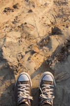converse sneakers standing in sand