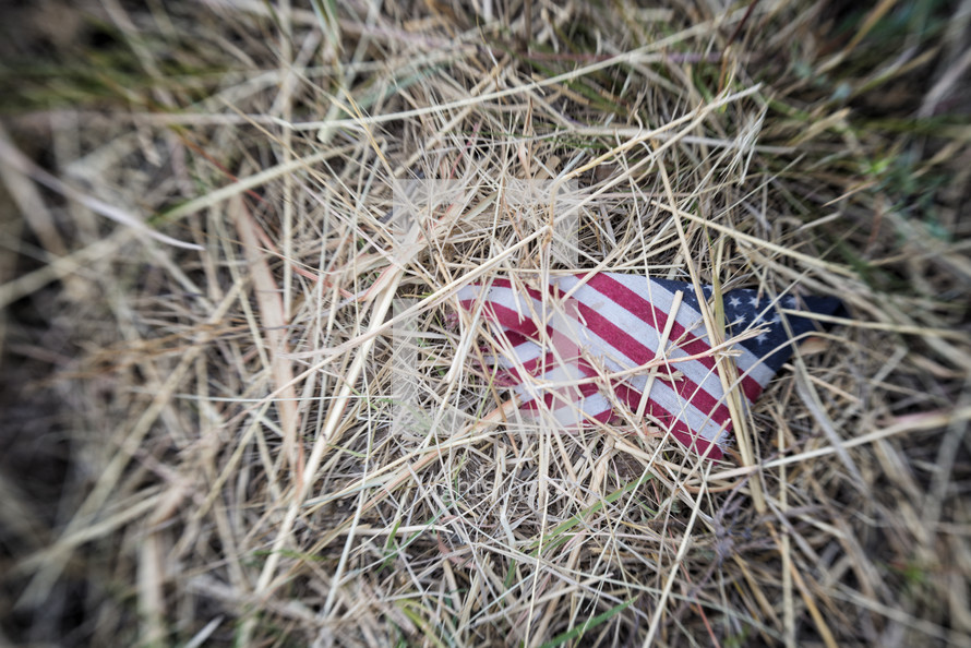 flag in straw