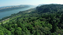 aerial view over a forest and river