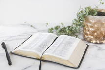 pen, open Bible, Bible, pages, reading glasses, house plant, marble, countertop
