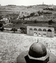 The Mount of Olives and the Dome of Chain from the Dome of Rock.