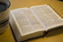 pages of an open BIble