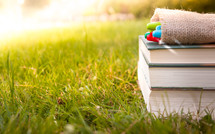 markers on a stack of books in the grass