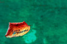 word welcome on a fall leaf floating in water