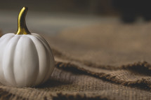 white pumpkin on burlap