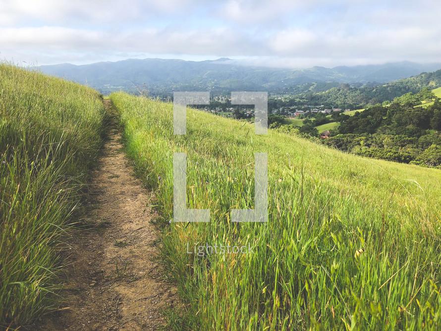 path on a grassy hillside