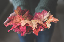 a woman holding fall leaves