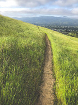 path on a green hillside