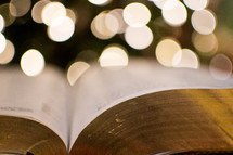 pages of a Bible and bokeh Christmas tree lights