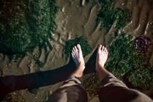 Standing on wet sand