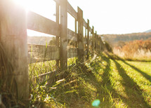 sunlight on a fence