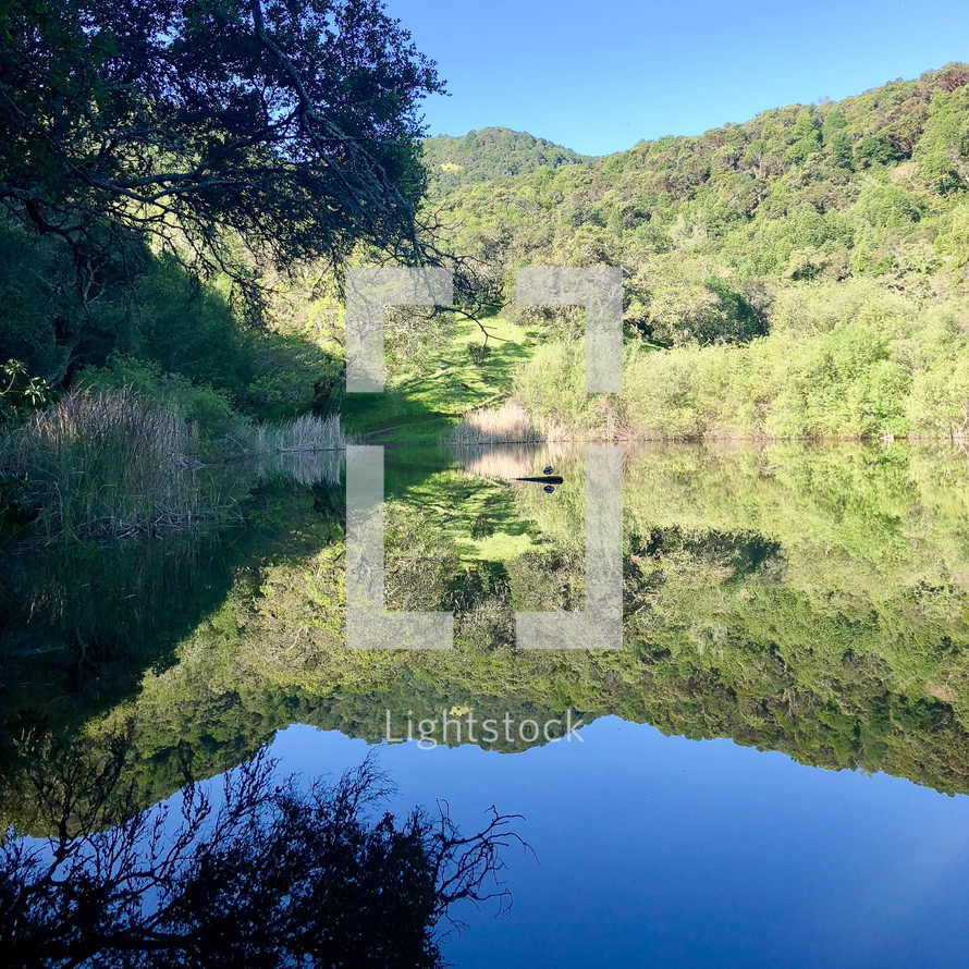 reflection of green hills on pond water