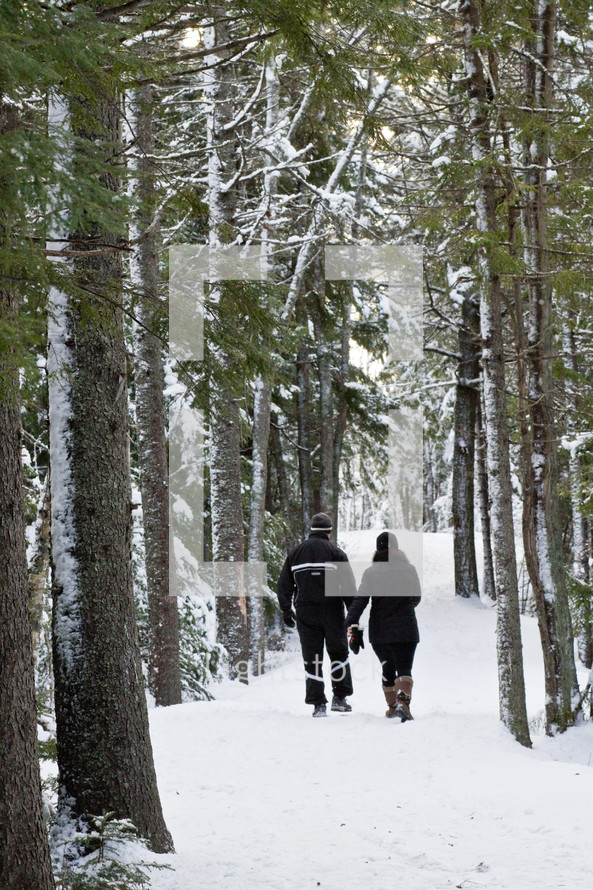 couple holding hands walking in a forest in the snow