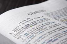 Spanish Bible open to Genesis.