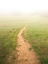 trail through an open meadow