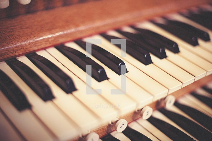keys on an organ