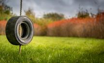 a tire swing over green grass