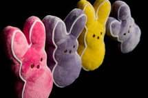 dog toy Easter bunny peeps