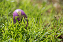 plastic Easter egg in grass