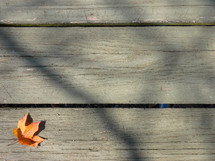 fall leaf on wood desk
