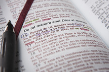 Pen on pages of open Spanish Bible.