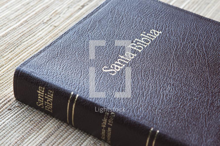 Spanish Bible.