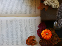 pumpkin, fall leaves, and open book