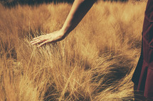 woman running her hand over tall grass