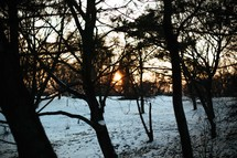 A winter scene of a sunset on trees and snow.