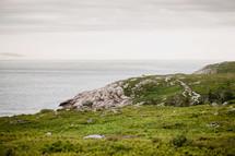 Ocean shore of rocks and shrubs.