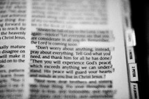 Don't worry about anything, instead pray about everything. Tell God what you need and thank him for all her has done.