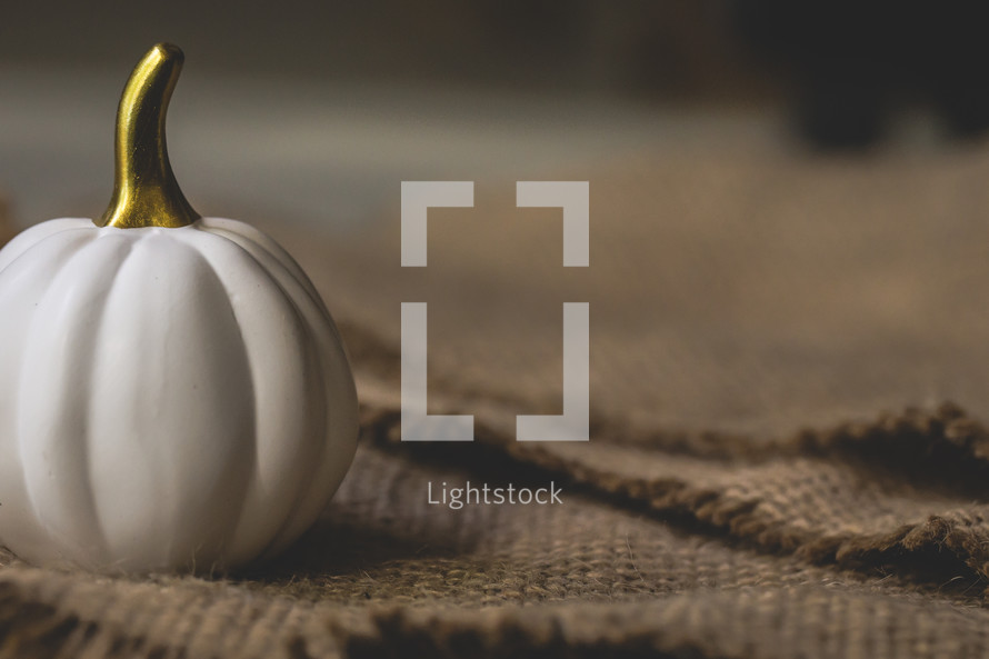 white pumpkin on burlap