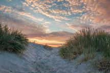 sand dunes on a beach at sunrise