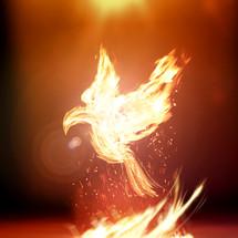 fiery doves - Holy Spirit