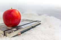 apple on a notebook and pencil