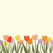border of colorful hand drawn tulips.