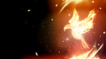 fiery doves - Holy Spirt