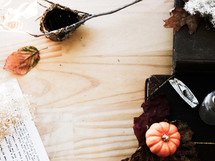 bird nest, branch, letter, type, pumpkin, fall, wood, lichen, feather, glass bottle, trinkets, naturalist, books, desk