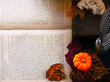 mini pumpkin, desk, feather, bottle, glass, book, fall, leaf, autumn, trinkets, lichen, pages, book