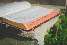open Bible on a concrete step in the sun