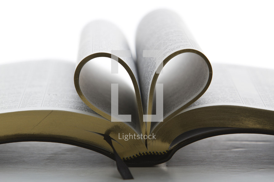 Spine of Bible with gold-edge inside pages folded in to make a heart shape, lying on table
