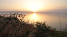 Compilation of footage from the Sea of Galilee at sunrise.