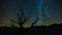 Timelapse of the Milky Way galaxy of stars moving through the night sky behind a field of burnt sage brush. This time-lapse was filmed near Mono Lake, California